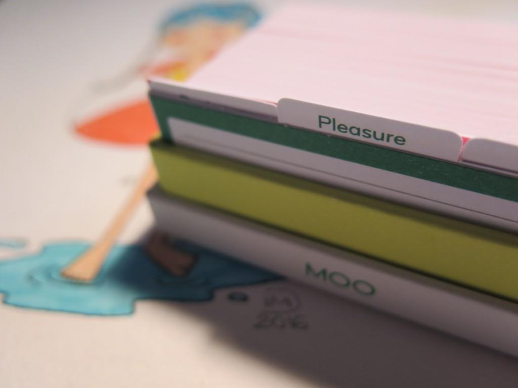 moo-minicards-illustration-isabelle-petits-brins2