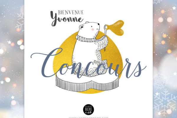 Illustration concours Instagram ours polaire