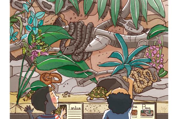 Illustration jeunesse été vivarium pour Larousse